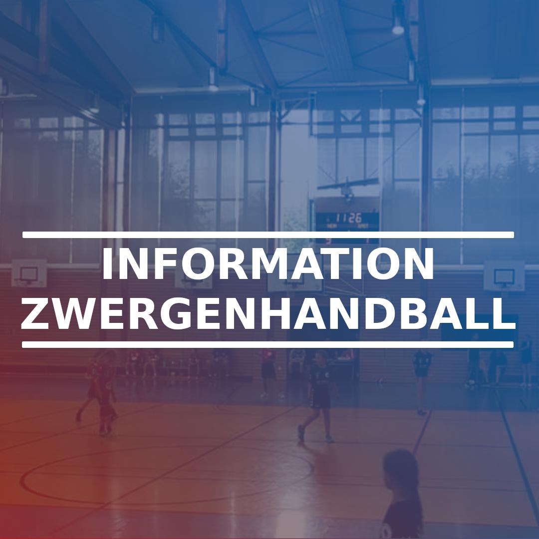 Information Zwergenhandball